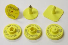 RFIDarticle110104V408.jpg